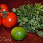 Pregnancy Cravings | aka how to make homemade salsa (and a link-up)