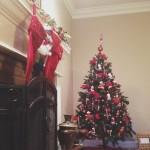 2013 Christmas Recap